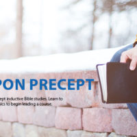 Precept Upon Precept Training